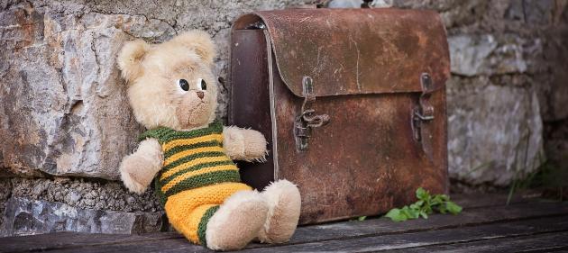 bear briefcase